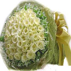 99枝白玫瑰/此生不渝