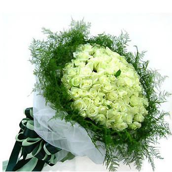 99枝白玫瑰/恰似你的温柔