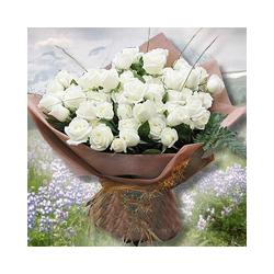 33枝白玫瑰/永远爱着你