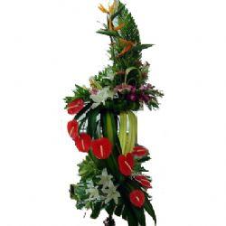 开业花篮: 香水百合,红掌,鹤望兰,泰国洋兰,玫瑰,富贵竹,散尾叶,巴西木,剑叶,龟背,杨子叶