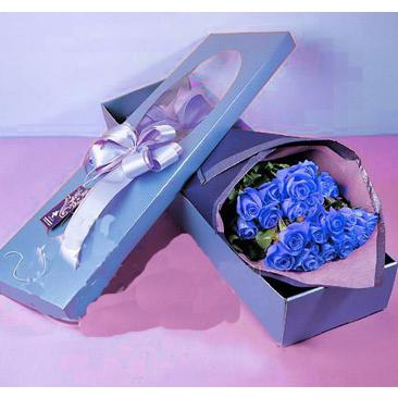 22枝蓝玫瑰/我很在乎你