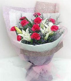10枝红色康乃馨/活力无限