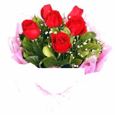 6枝红玫瑰/浪漫之梦