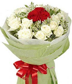 16朵白玫瑰/在水一方