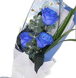 3枝蓝玫瑰/亲爱的