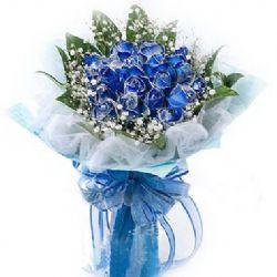 19枝蓝色妖姬/有你的幸福