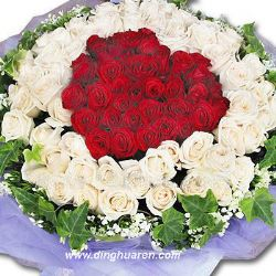 99枝玫瑰/愛意久久: 99枝白紅玫瑰,圍成一個愛心圖樣 外層滿天星高山積雪豐滿。