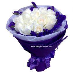 19枝白玫瑰/因为有你