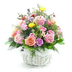 18枝玫瑰/美好祝愿