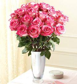 33枝粉玫瑰/优雅