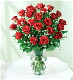 16枝红玫瑰/欲动的心
