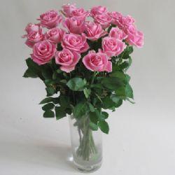 19枝玫瑰/情深意浓