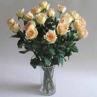 18枝香槟玫瑰/钟情的心