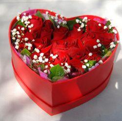 18枝红玫瑰/幸福此生: 18朵红色玫瑰,满天星配叶外围