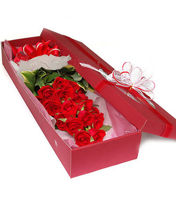 19枝紅玫瑰/最愛