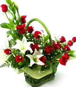 19枝红玫瑰/情意无限
