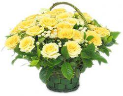 29枝黄玫瑰/幸福之舟