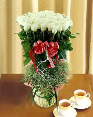36枝白玫瑰/甜蜜幸福
