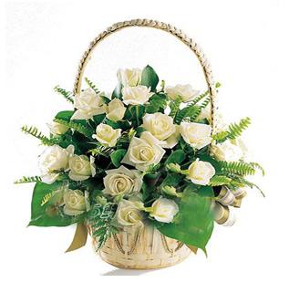 28枝白玫瑰/温馨问候