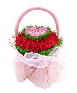 33枝玫瑰/爱的快乐