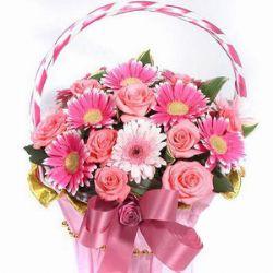 12枝粉玫瑰/温暖祝福