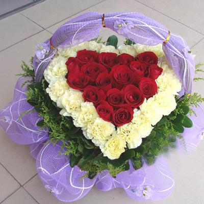 18枝红玫瑰/情真意切