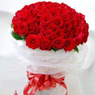 33枝红玫瑰/相爱每一天-订花人鲜花速递