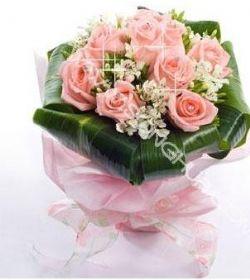 11枝粉玫瑰/情非得以