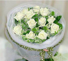 13朵白玫瑰/幸福之花