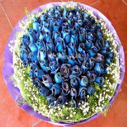 144枝蓝玫瑰/地老天荒: 144朵蓝玫瑰 满天星(配花) 黄莺(配花)