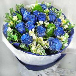 19枝蓝玫瑰/把你放在心上