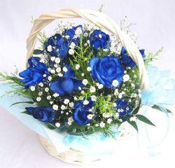 11枝蓝玫瑰/想见你
