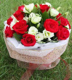 16枝红玫瑰/思念无尽