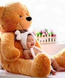 礼品/泰迪熊