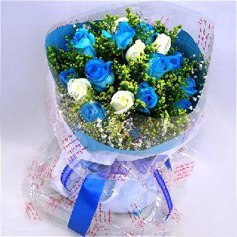 11枝蓝玫瑰/至爱