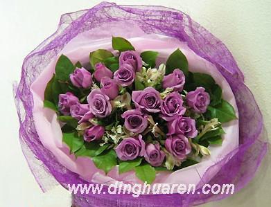 24枝紫玫瑰/浪漫情缘