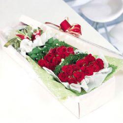 20枝紅玫瑰/真的愛你