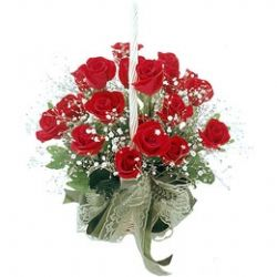 18枝红玫瑰/浪漫情怀