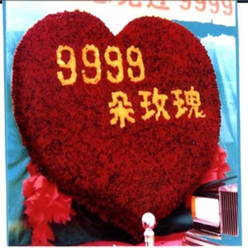 9999枝玫瑰/爱你一辈子
