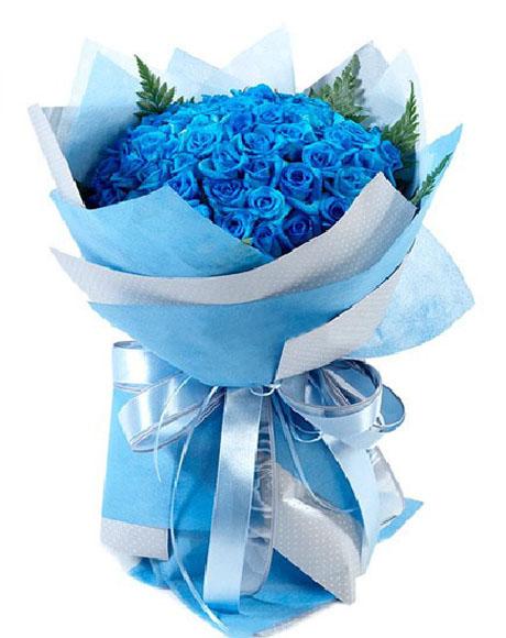 99枝蓝玫瑰/相逢的宿命