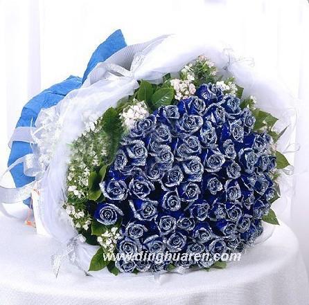 99枝蓝玫瑰/蓝色海洋