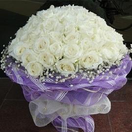99枝白玫瑰/一生一世的情