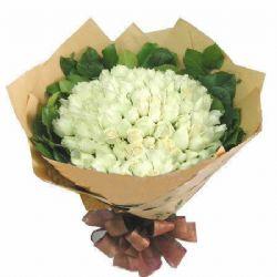 99枝白玫瑰/纯洁爱恋