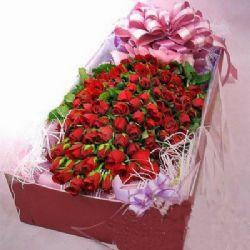 50枝红玫瑰/因你而美丽
