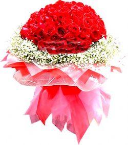 50枝红玫瑰/无悔的爱