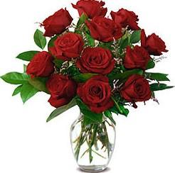 12枝红玫瑰/红火的日子