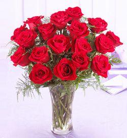 18枝�t玫瑰/��硎悄�: 18朵�t玫瑰,配�m量�G�~�!�
