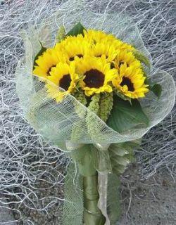 11枝向日葵/温暖心情: 11枝向日葵