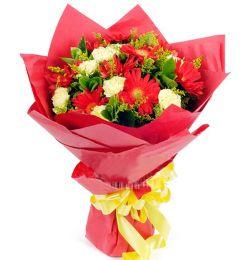 9枝太阳花/靓丽心情: 红色扶郎9枝、黄色康乃馨9枝,黄莺间插