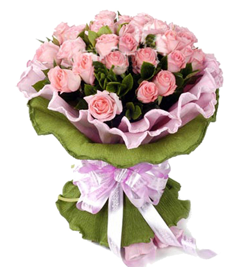33枝粉玫瑰/一生情一世爱